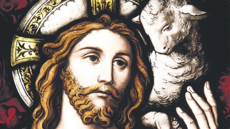 Ogłoszenia Duszpasterskie Na IV Niedzielę Wielkanocną