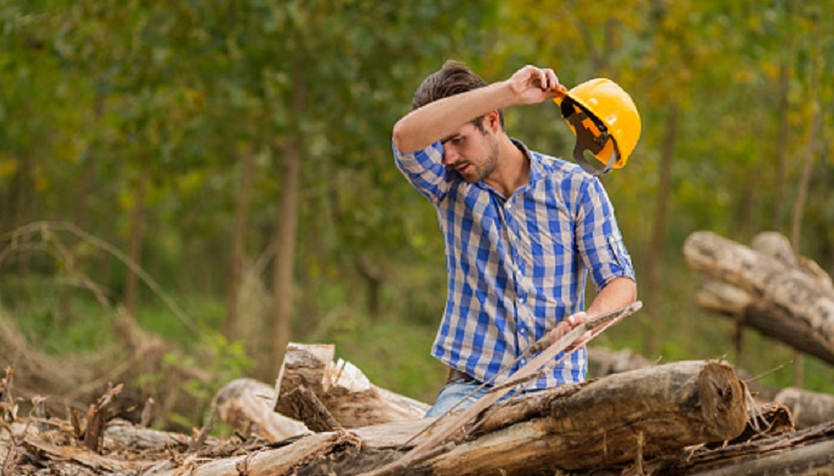 Tired Young Woodcutter Wipes The Sweat From His Forehead